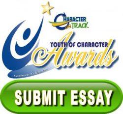 submit-essay-button