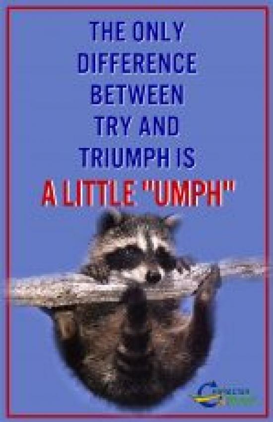 A Little Umph