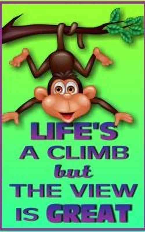 Life's a Climb2